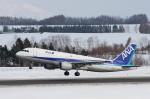 安芸あすかさんが、女満別空港で撮影した全日空 A320-211の航空フォト(写真)