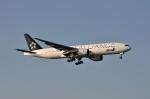 aMigOさんが、羽田空港で撮影した全日空 777-281の航空フォト(写真)