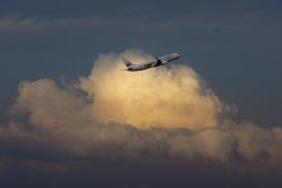 hentai_aさんが、羽田空港で撮影したJALエクスプレス 737-846の航空フォト(飛行機 写真・画像)