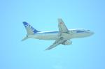 海人9さんが、那覇空港で撮影したANAウイングス 737-5L9の航空フォト(写真)