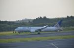 倉科なりたさんが、成田国際空港で撮影したユナイテッド航空 787-8 Dreamlinerの航空フォト(写真)