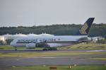 倉科なりたさんが、成田国際空港で撮影したシンガポール航空 A380-841の航空フォト(写真)
