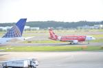 倉科なりたさんが、成田国際空港で撮影したエアアジア・ジャパン(〜2013) A320-216の航空フォト(写真)