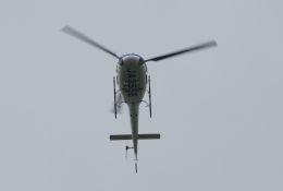 木人さんが、成田国際空港で撮影したシマブンコーポレーション AS355N Ecureuil 2の航空フォト(飛行機 写真・画像)