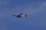 T.Sazenさんが、神戸空港で撮影したターキッシュ・エアラインズ A330-203の航空フォト(写真)