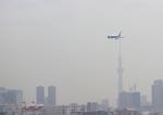 ふじいあきらさんが、羽田空港で撮影した全日空 767-381/ERの航空フォト(写真)