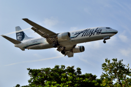 Cimarronさんが、ロサンゼルス国際空港で撮影したアラスカ航空 737-490の航空フォト(飛行機 写真・画像)