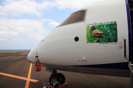 安芸あすかさんが、三宅島空港で撮影したエアーニッポンネットワーク DHC-8-314Q Dash 8の航空フォト(飛行機 写真・画像)