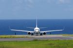 かずまっくすさんが、新石垣空港で撮影した全日空 737-881の航空フォト(写真)