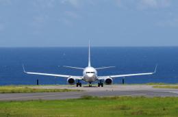 かずまっくすさんが、新石垣空港で撮影した全日空 737-881の航空フォト(飛行機 写真・画像)