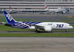 NINEJETSさんが、羽田空港で撮影した全日空 787-8 Dreamlinerの航空フォト(写真)
