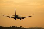 Severemanさんが、静岡空港で撮影したチャイナエアライン 737-809の航空フォト(写真)