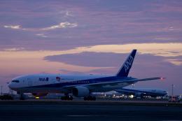 hentai_aさんが、羽田空港で撮影した全日空 777-281/ERの航空フォト(飛行機 写真・画像)