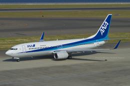 Scotchさんが、中部国際空港で撮影したエアーニッポン 737-881の航空フォト(飛行機 写真・画像)