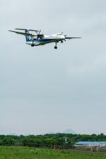 パンダさんが、中標津空港で撮影したANAウイングス DHC-8-402Q Dash 8の航空フォト(写真)