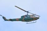 パンダさんが、札幌飛行場で撮影した陸上自衛隊 UH-1Jの航空フォト(飛行機 写真・画像)