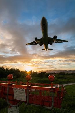 tetsu_qooさんが、伊丹空港で撮影した全日空 767-381の航空フォト(写真)
