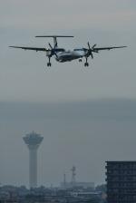 パンダさんが、函館空港で撮影したANAウイングス DHC-8-402Q Dash 8の航空フォト(写真)