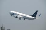 ばっしーさんが、羽田空港で撮影した全日空 737-881の航空フォト(写真)