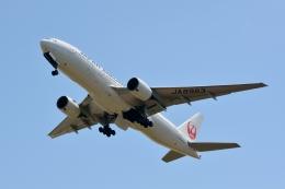 Dojalanaさんが、函館空港で撮影した日本航空 777-246の航空フォト(飛行機 写真・画像)