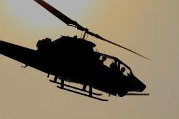 しょうとくたさんが、大宮駐屯地で撮影した陸上自衛隊 AH-1Sの航空フォト(飛行機 写真・画像)
