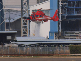 ぶちょさんが、伊丹空港で撮影した東京消防庁航空隊 AS365N3 Dauphin 2の航空フォト(飛行機 写真・画像)