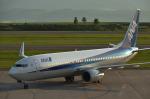 パンダさんが、旭川空港で撮影した全日空 737-881の航空フォト(写真)