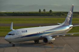 パンダさんが、旭川空港で撮影した全日空 737-881の航空フォト(飛行機 写真・画像)