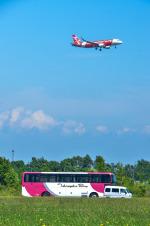 パンダさんが、新千歳空港で撮影したエアアジア・ジャパン(〜2013) A320-216の航空フォト(飛行機 写真・画像)