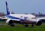 rjnsphotoclub-No.07さんが、福岡空港で撮影した全日空 787-8 Dreamlinerの航空フォト(写真)
