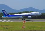 よしこさんが、広島空港で撮影した全日空 A320-211の航空フォト(飛行機 写真・画像)