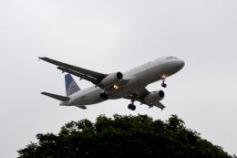 Cimarronさんが、ロサンゼルス国際空港で撮影したユナイテッド航空 A320-232の航空フォト(飛行機 写真・画像)