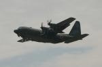ばっしーさんが、茨城空港で撮影した航空自衛隊 C-130H Herculesの航空フォト(写真)