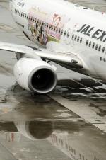 パンダさんが、帯広空港で撮影したJALエクスプレス 737-846の航空フォト(写真)