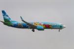 LAX Spotterさんが、ロサンゼルス国際空港で撮影したアラスカ航空 737-890の航空フォト(写真)
