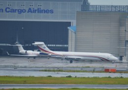 tsukatakuさんが、成田国際空港で撮影したスワジランド政府 MD-87 (DC-9-87)の航空フォト(飛行機 写真・画像)