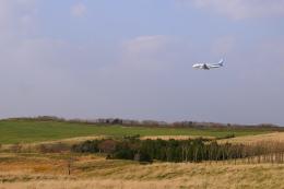安芸あすかさんが、稚内空港で撮影した全日空 A320-211の航空フォト(飛行機 写真・画像)