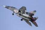 ゆーぱろさんが、フェアフォード空軍基地で撮影したポーランド空軍 MiG-29Aの航空フォト(写真)
