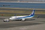コバトンさんが、羽田空港で撮影した全日空 737-881の航空フォト(写真)