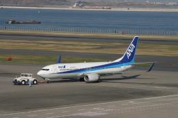 コバトンさんが、羽田空港で撮影した全日空 737-881の航空フォト(飛行機 写真・画像)