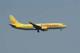 Night Owlさんが、フランクフルト国際空港で撮影したトゥイフライ 737-8K5の航空フォト(飛行機 写真・画像)