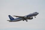 コバトンさんが、成田国際空港で撮影した全日空 A320-214の航空フォト(写真)
