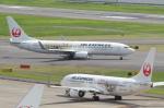 SKYLINEさんが、羽田空港で撮影したJALエクスプレス 737-846の航空フォト(飛行機 写真・画像)