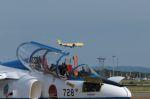 木人さんが、千歳基地で撮影した全日空 747-481(D)の航空フォト(写真)