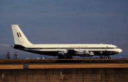 チャーリーマイクさんが、羽田空港で撮影したオーストラリア空軍 707-338Cの航空フォト(飛行機 写真・画像)