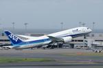 Severemanさんが、羽田空港で撮影したボーイング 787-8 Dreamlinerの航空フォト(写真)