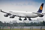 パンダさんが、成田国際空港で撮影したルフトハンザドイツ航空 A340-642Xの航空フォト(写真)