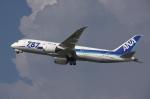 WING_ACEさんが、伊丹空港で撮影した全日空 787-8 Dreamlinerの航空フォト(飛行機 写真・画像)