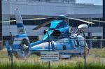 パンダさんが、松本空港で撮影した長野県警察 AS365N3 Dauphin 2の航空フォト(写真)
