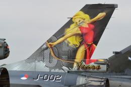 フェアフォード空軍基地 - RAF Fairford [FFD/EGVA]で撮影されたオランダ王立空軍 - Royal Netherlands Air Force [NAF]の航空機写真